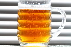 Beer glass blinds sunlight D Royalty Free Stock Images