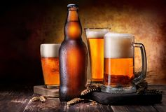 Light beer composition Stock Photography