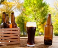 Beer in glass,bottles on wooden table with blurred forrest on background, food and drink concept,selective focus,copy space royalty free stock image