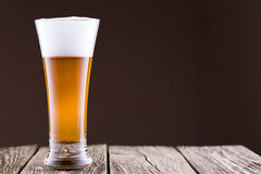 Beer glass in a brown background. Royalty Free Stock Image