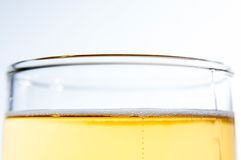 Beer stock photos