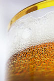 Beer in the Glass Royalty Free Stock Photo