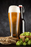 Beer glass on dark background Royalty Free Stock Photography