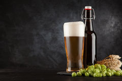 Beer glass on dark background. Beer glass and bottle with malt and hops, dark background Stock Images