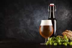 Beer glass on dark background Royalty Free Stock Image