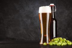 Beer glass on dark background. Beer glass and bottle with malt and hops, dark background Stock Photography