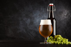 Beer glass on dark background. Beer glass and bottle with malt and hops, dark background Royalty Free Stock Images