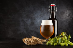 Beer glass on dark background Stock Photos
