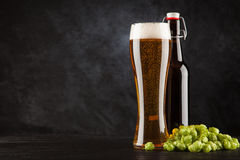 Beer glass on dark background. Beer glass with malt and hops, dark background Royalty Free Stock Image