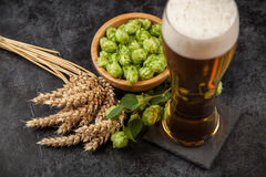Beer glass on dark background. Beer glass with malt and hops, dark background Stock Image