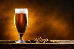 Beer glass with dark cold beer with bubble froth and peanuts on. The table royalty free stock photos