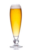 Beer glass filled with light beer. Full glass with foam on white Stock Image
