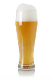 Beer in glass with foam Royalty Free Stock Photo