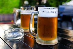 Beer in a glass glass glass, bubbles rise. On the background of green foliage glass with Golden drops. stock photo
