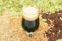 Beer in glass with grain and hops. Cold stout beer in crystal glass with various colors of grain and hops Stock Photo