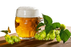 Beer glass and hops Stock Images