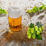 Beer glass and hops. Beer glass and raw material for beer production Stock Images