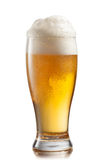 Beer in glass isolated on white Stock Photography