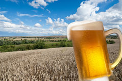 Beer glass with landscape Royalty Free Stock Image