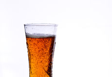 Beer. In glass liquor drink stock image