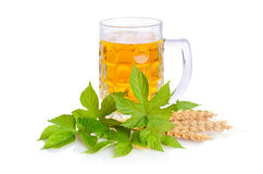 Beer in glass mug Royalty Free Stock Photography