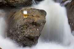 Beer glass in nature Royalty Free Stock Photos