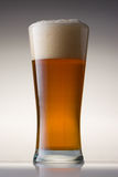 Beer Glass Stock Photography