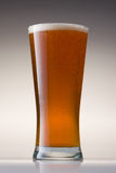 Beer Glass Royalty Free Stock Photography