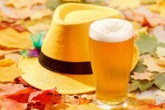 Beer glass pint octoberfest picnic on natural background with hat and autumn leaves stock photography