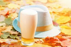 Beer glass pint octoberfest picnic on natural background with hat and autumn leaves royalty free stock photos