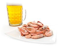 Beer in glass and prawns Royalty Free Stock Image