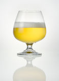 Beer in glass with reflection Stock Images