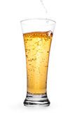 Beer in the glass with splash and bubbles stock photography