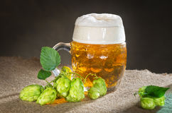 Beer glass. Still life with beer glass and hops Stock Photos