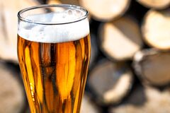 Beer glass and timber.In the rays of sunlight. Close-up
