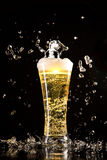 Beer glass with water splashes Royalty Free Stock Images