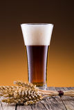 Beer glass with wheat on a golden background. Stock Images