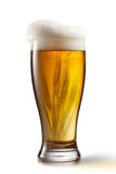 Beer in glass and wheat isolated on white Stock Images