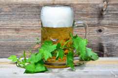 Beer glass wooden background Royalty Free Stock Image