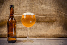 Beer in a glass Royalty Free Stock Photography