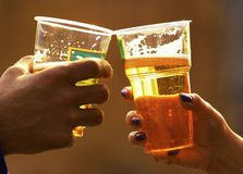 Beer in glasses Stock Image