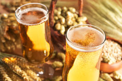 Beer glasses Stock Photos