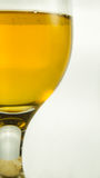 Beer in goblet. Closeup beer goblet with white background Stock Photo