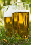 Beer in the grass Royalty Free Stock Image