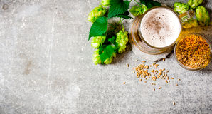 Beer, green hops and malt on stone surface. Royalty Free Stock Photo