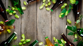 Beer and green hops. On wooden table. Stock Photography