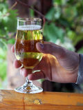 Beer in hand. Glass of beer in hand Royalty Free Stock Image