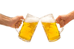 Beer mugs cheers. Man and woman hands giving cheers with two glass of one litter beer mugs isolated on white background royalty free stock image