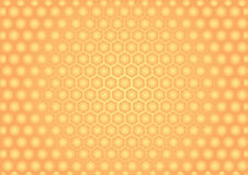 Beer honeycombs. Royalty Free Stock Image