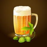 Beer hop background Royalty Free Stock Images